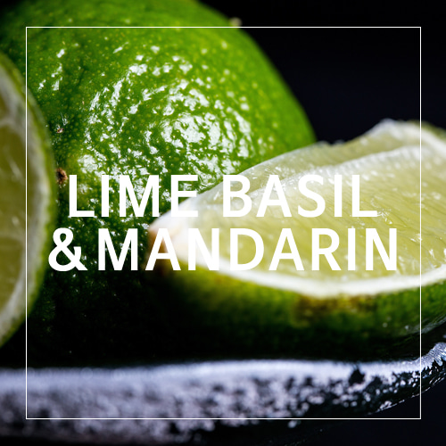 [USA] LIME BASIL&MANDARIN_라임바질&만다린(WL)