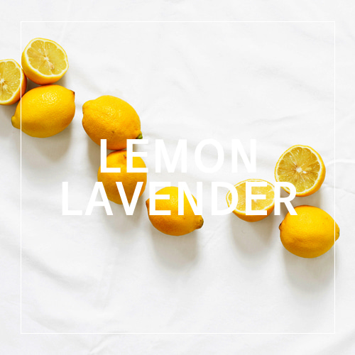 [USA]  LEMON LAVENDER_레몬 라벤더(WL)
