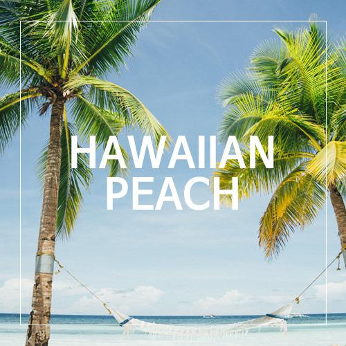 [USA] HAWAIIAN PEACH_하와이안 피치(WL)