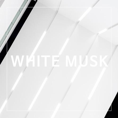 [USA] WHITE MUSK_화이트 머스크(WL)