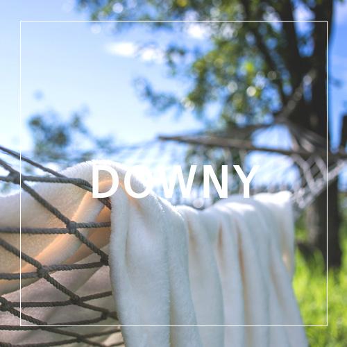 [USA] DOWNY_다우니(WL)