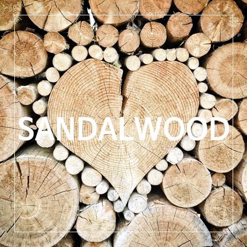 [USA] SANDALWOOD_샌달우드(WL)