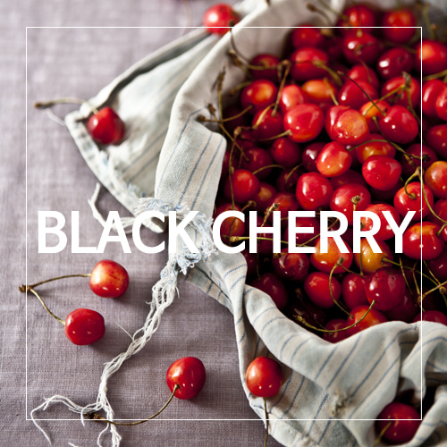 [USA]BLACK CHERRY_블랙체리(WL)